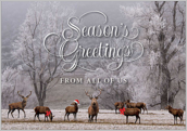 Season's Greeting - greeting-cards Maker