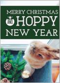 Hoppy Happy Holiday - greeting-cards Maker