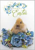 Easter Rabbit - greeting-cards Maker