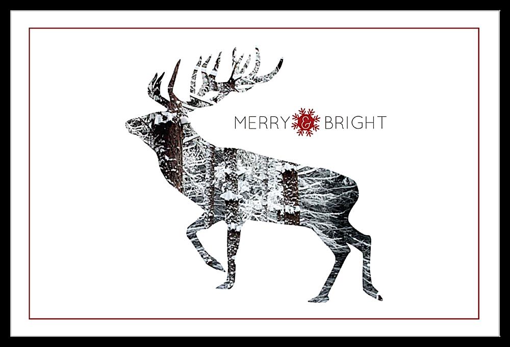 Snowy Reindeer front - Invitation Cards Maker